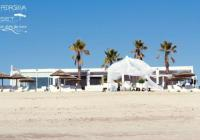 Set Loung Beach Weddings