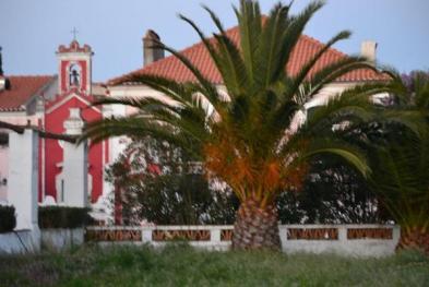 Quinta Pureza